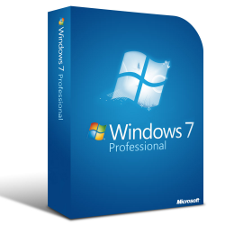 Windows 7 Professional 1PC...